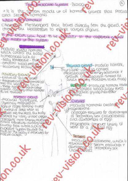 B3 Theendocrinesystem Page 001